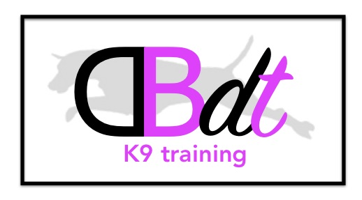 dbdt dog training logo
