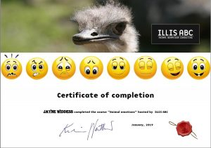 animal emotions certificate