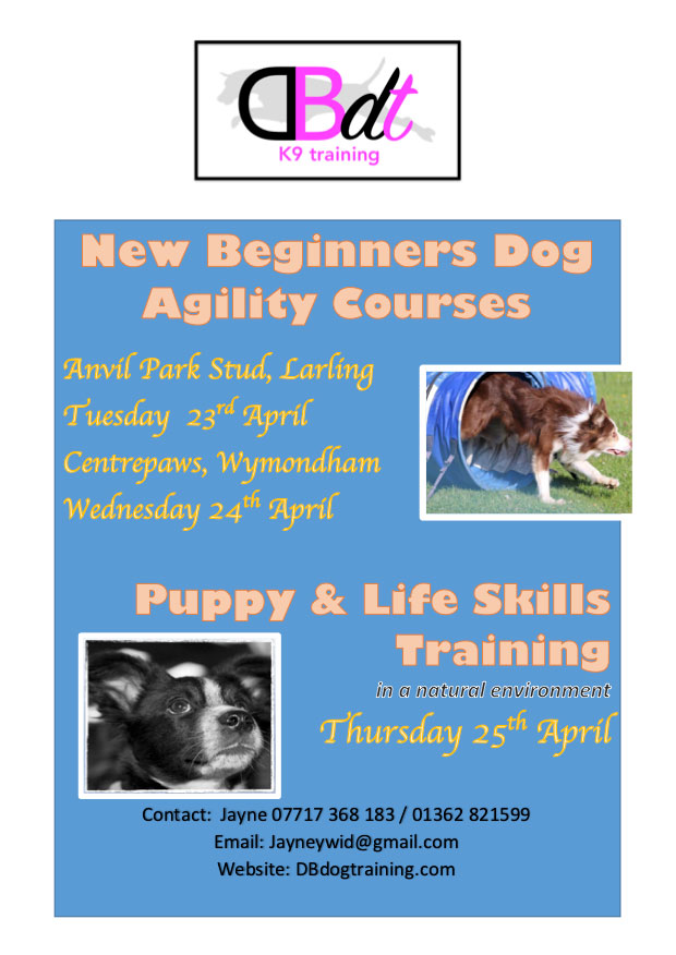 new agility classes